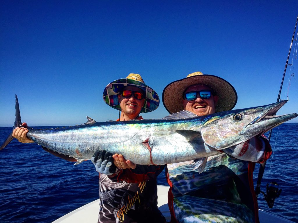 Wahoo are one of the craziest fish in the sea