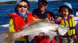 Jewfish are common in the Macleay River